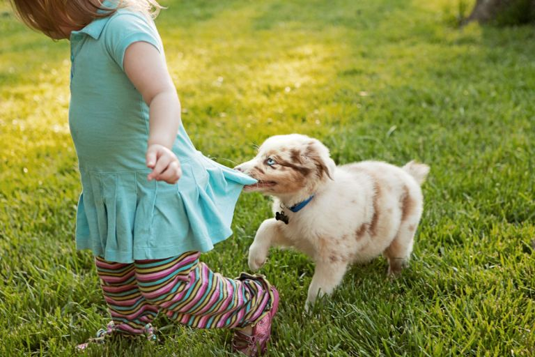 photograph child and puppy